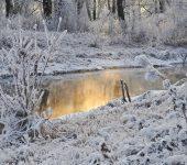 Neve e água